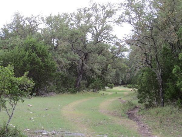 Ranches For Sale Texas   A Lehmann Ranch Sales Company